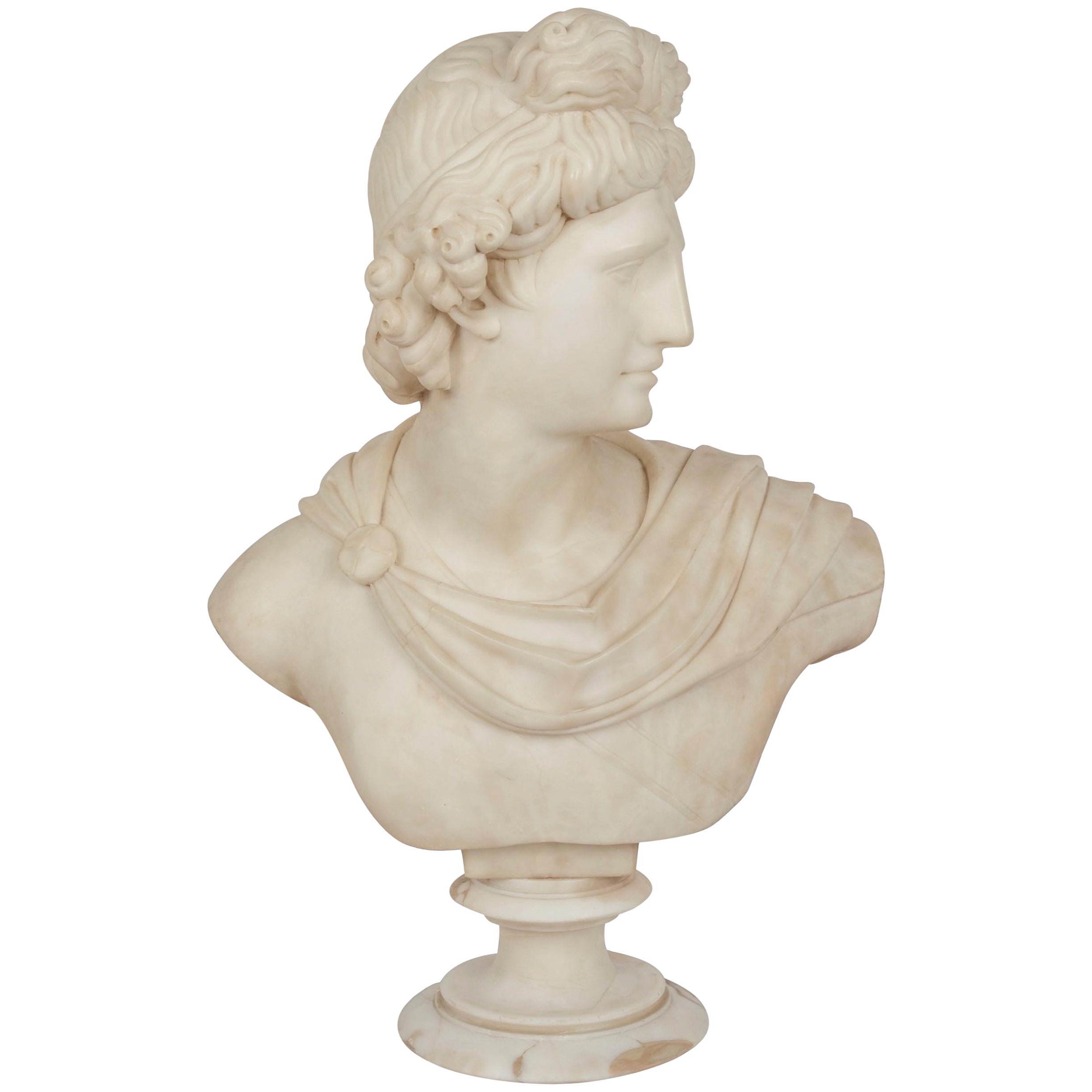 Grand Tour Alabaster Sculpture Bust of Apollo Belvedere, 19th Century