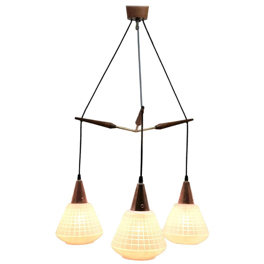 Midcentury Tree Pendant Lights, Teak with Frosted Optical Shade Massive, Belgium