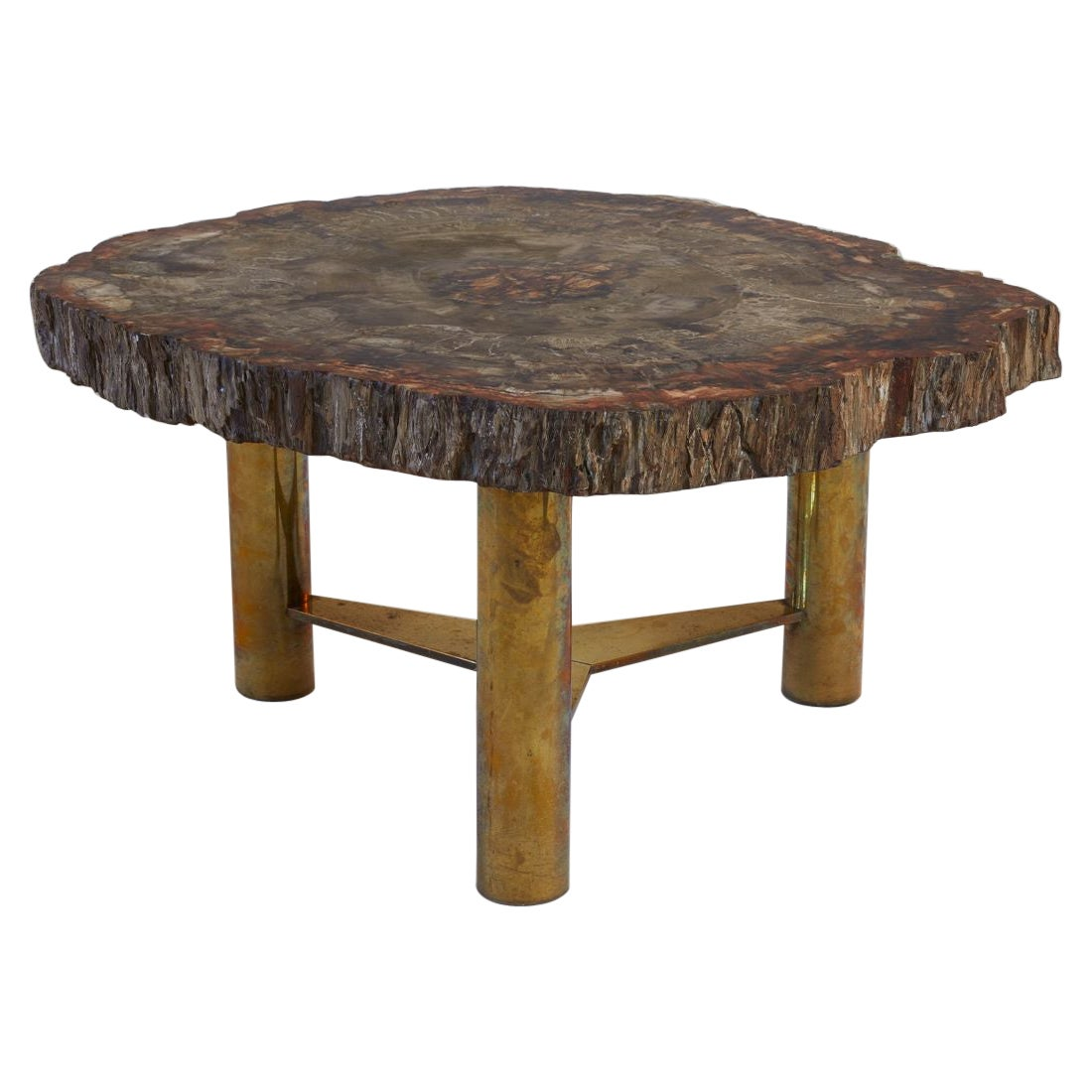 1960s French Petrified Wood Plateaux with Bronze Base Cocktail Table