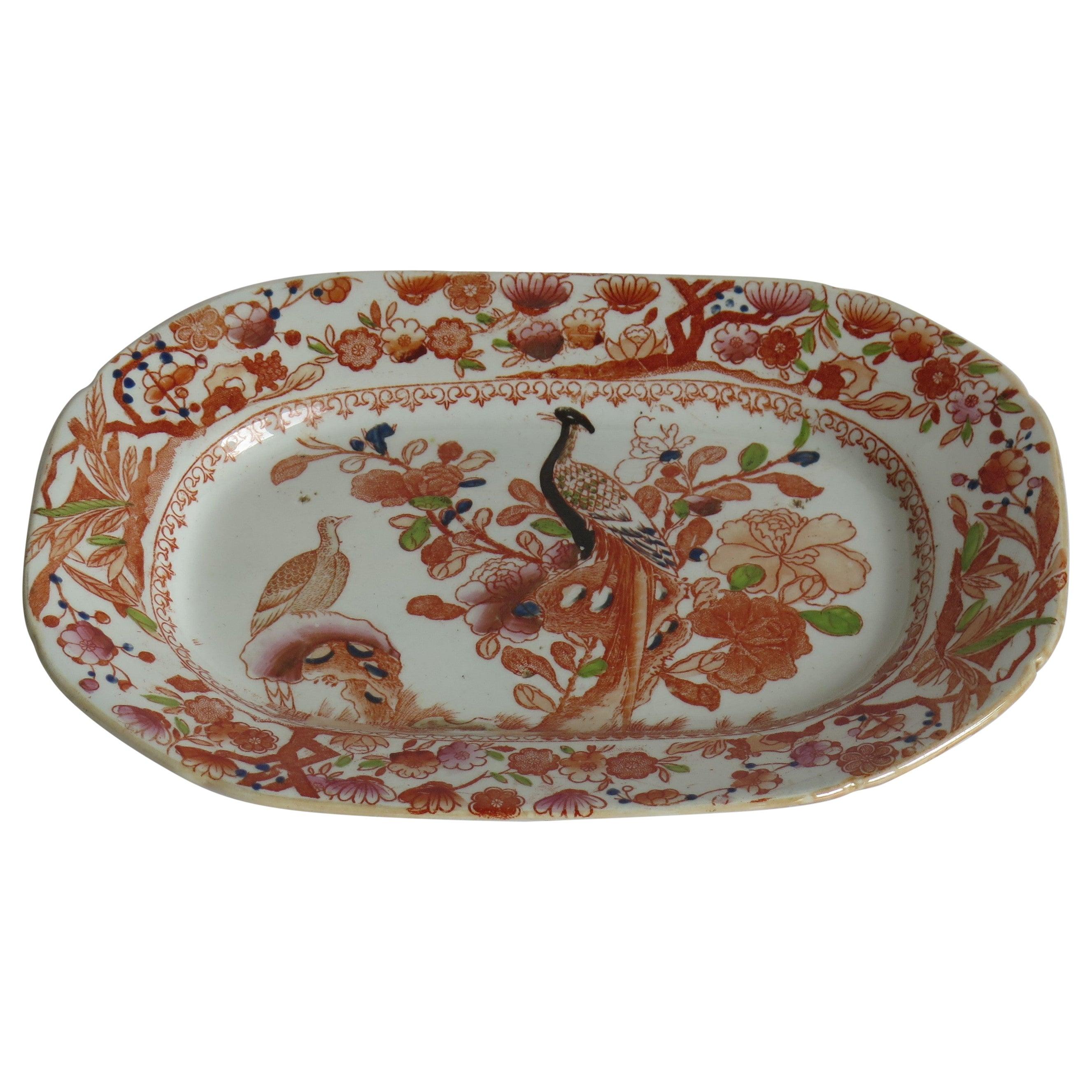 Georgian Mason's Ironstone Platter in Oriental Pheasant Ptn, circa 1818