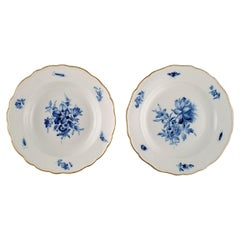 Two Antique Meissen Porcelain Plates with Hand-Painted Flowers and Gold Edge