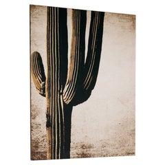 """cactus"" Artwork by Pascale Dumons"