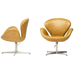 1971 Leather Swan Chairs by Arne Jacobsen