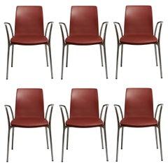 "Set of 6 Jorge Pensi ""Gorka"" Chair"
