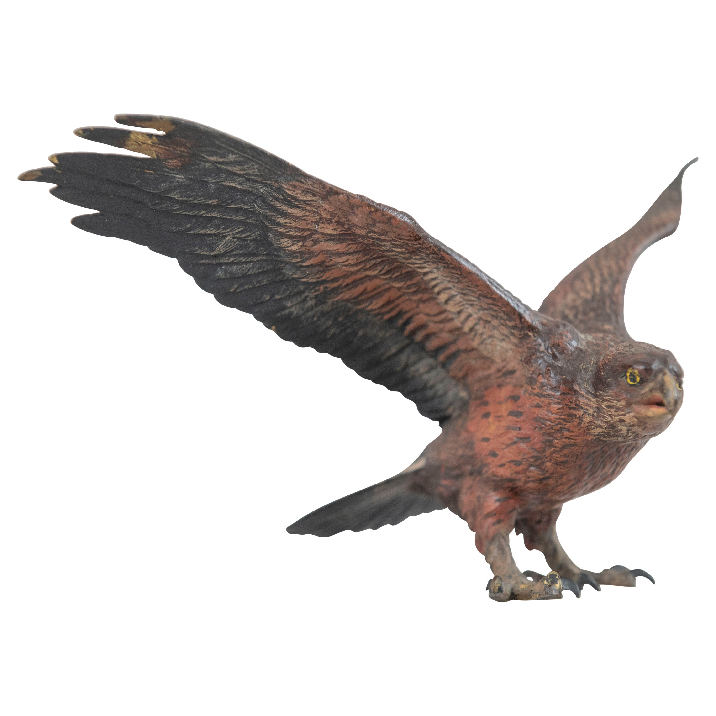 Cold Painted Vienna Bronze Eagle, Bergmann Foundry, ca. 1900