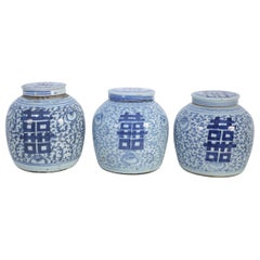 Chinese Blue and White Character Lidded Ginger Jar Vases