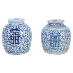 Pair of Chinese Blue and White Floral Lidded Ginger Jar Vases