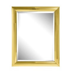 Large Mirror with Molded Polished Brass Frame 1970s