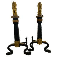 19th Century Brass and Iron Lion Andirons