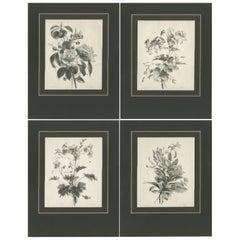 Set of 4 Antique Prints of Various Flowers by Desguerrois 'c.1830'