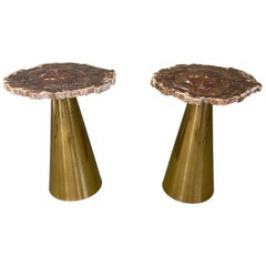 Rare Pair of Italian in Brass Tables with Petrified Wood Tops