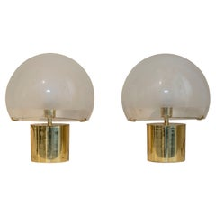 """Pair of """"Porcino"""" Table Lamp with Brass Basement"""