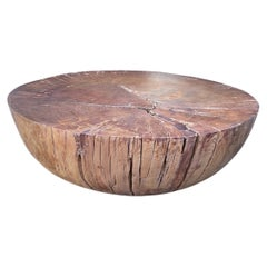 Modern Organic Drum Coffee Table made from New Zealand Ancient Swamp Kauri Wood
