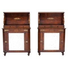Pair of 19th Century English Regency Rosewood Side Cabinets