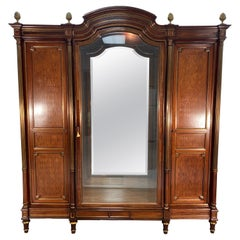 19th Century French Louis XVI Armoire Display Cabinet