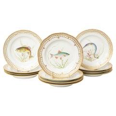 12 Flora Danica Fish Plates, Vintage and Vibrantly Painted, Royal Copenhagen