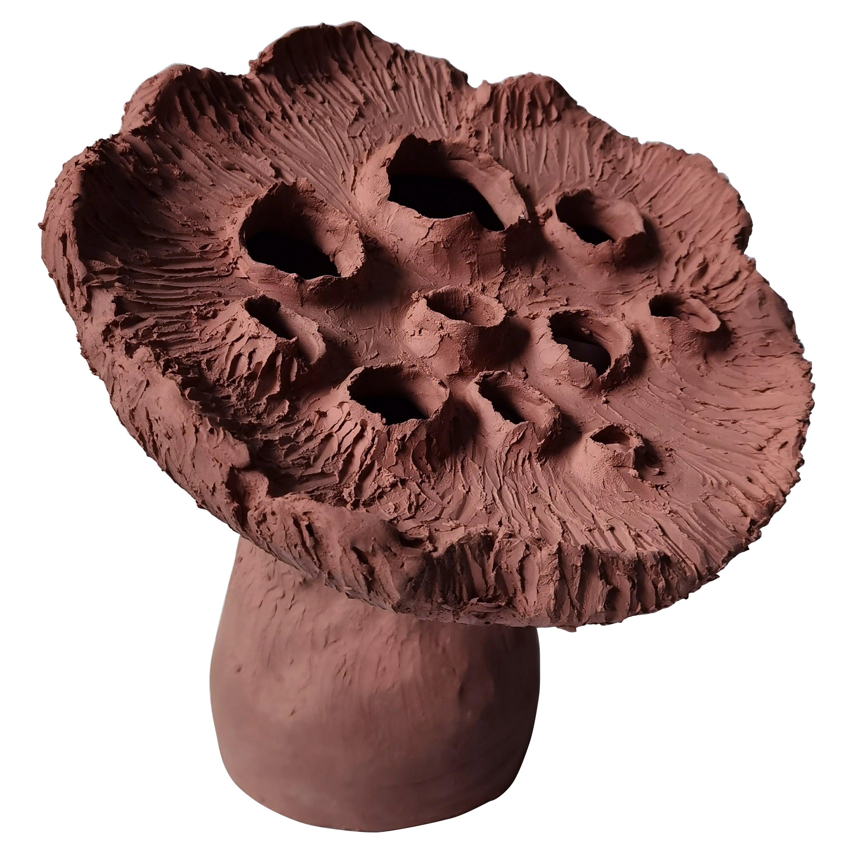Terracotta Lotus Pod by Jan Ernst