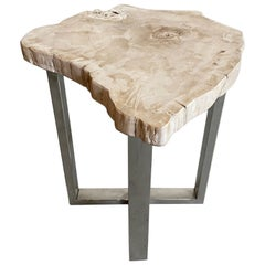 Andrianna Shamaris Petrified Wood Slab Top Side Table on Stainless Steel Base