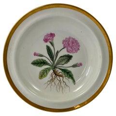 Chamberlains Worcester Porcelain 'Botanical' Dish, c. 1810