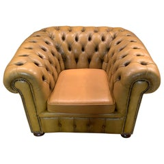 Mustard Yellow Leather Chesterfield Club Armchair