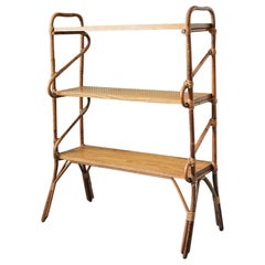 Vintage Bamboo and Rattan Shelf, France 1960's
