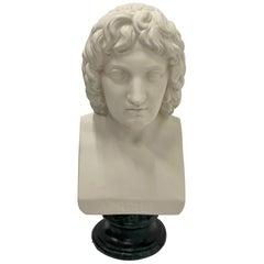 Classical Roman Sculptures