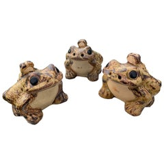 Japan Three Garden Frog Family