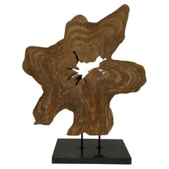 Gutsy Organic Modern Amoeba Shaped Wood Sculpture with Granite Base