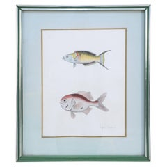 Framed Lithograph of Two Multi-Colored Tropical Fish