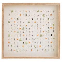 Dried Flora Composition, Grid & Natural Composition
