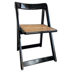 "Mid-Century Modern Italian ""Trieste"" Chairs by Aldo Jacober for Alberto Bazzani"