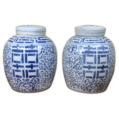 Pair of Chinese Blue and White Hand Decorated Porcelain Ginger Jar, 20th