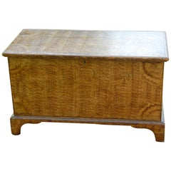 American Early 19th Century Sponge Painted Trunk with Bracket Base