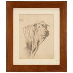 Pencil Drawing Depicting the Head of an Ox, Austria 1920