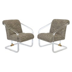 Pair of Lion in Frost Lucite and Brass Armchairs