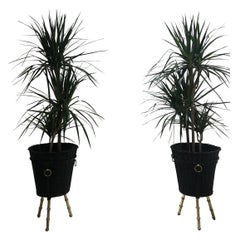 Pair of Brass Planters by Jacques Adnet, 1950