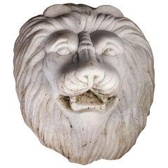 Marble Lion Head