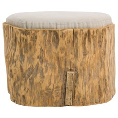 Central European Tree Trunk with Upholstered Seat