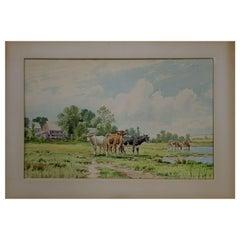 Watercolor Painting by Thomas Bigelow Craig Watercolor, Cows