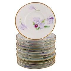 Twelve Antique Unique Royal Copenhagen Porcelain Plates with Iris Flowers