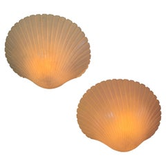 Pair of Shell Wall Lamps by André Cazenave France, 1970s