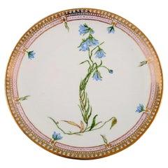 Ceramic Dinner Plates