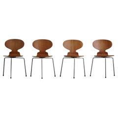 Danish modern Ant Dining Chairs in Teak by Arne Jacobsen for Fritz Hansen, 1960s