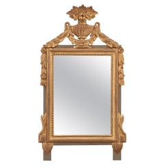 French 19th Century Louis XVI-Style Mirror