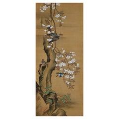 19th Century Japanese Silk Painting by Kano Chikanobu, Cherry Blossom & Birds