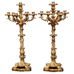 Pair of 19th Century French Louis XV Bronze Dore Seven-Light Candelabras