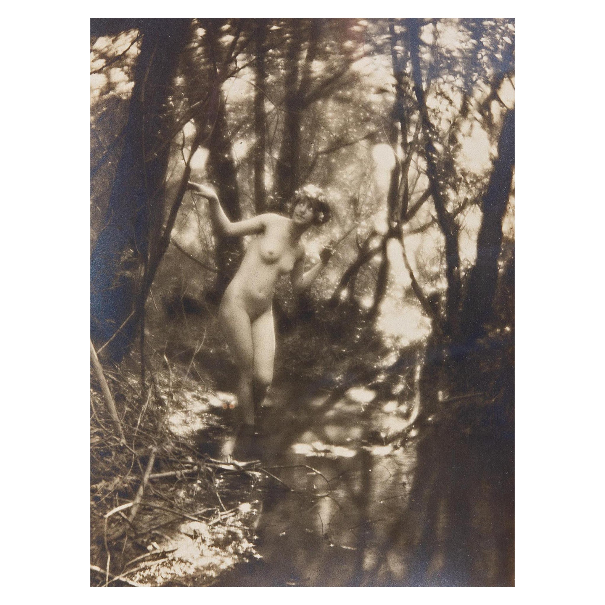Pictorialist Photograph Nude Wood Nymph by Charles Cook Circa 1910