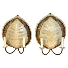 Pair of Two-Colour Natural Tortoise Shell Sconces, Attributed to Maison Jansen