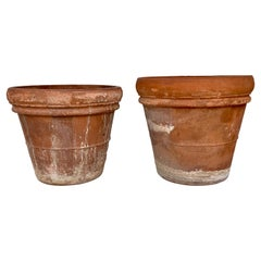 Pair of Clay Planters from Spain