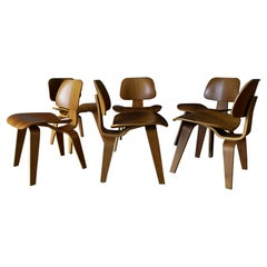 Set of 6 Walnut Eames for Herman Miller DCW Chairs
